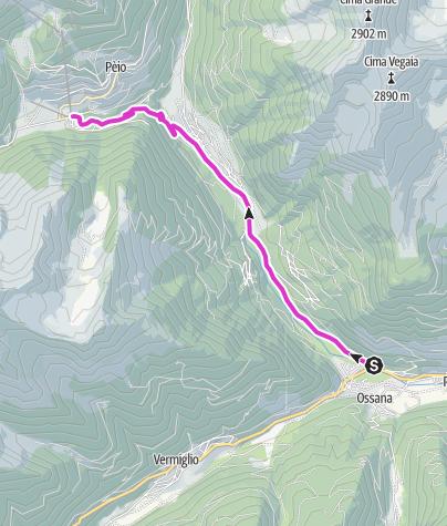 Map / Peio Fonti