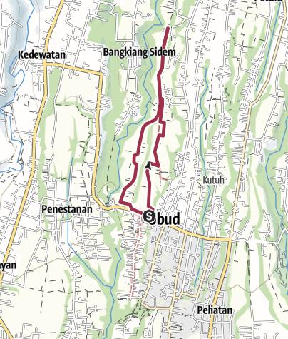 Carte / Rizière Ubud
