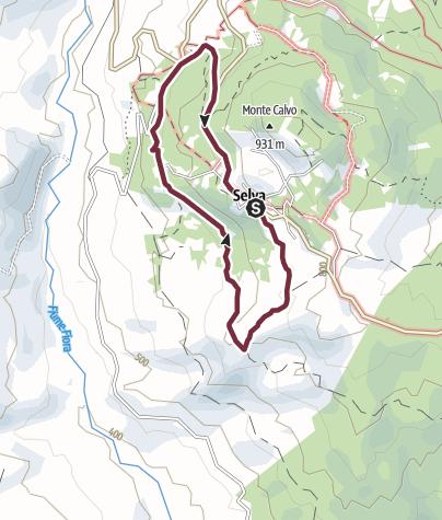 Map / N.09 SELVA ANELLO DELLA RIPA SANTA FIORA - AMIATA - TOSCANA