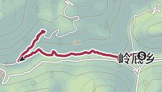 地图 / 岭底南充至张庄古道