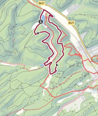 Karte / Trainingsrunde Pfälzerwald DT