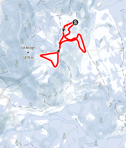 Map / The cross-country skiing trails in the Armentara meadows - Ciamp