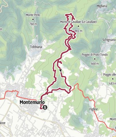 Map / Percorso da Montemurlo-Le Cavallaie 26 gen 2021