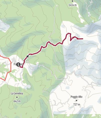Map / FALCIANO TOPPE