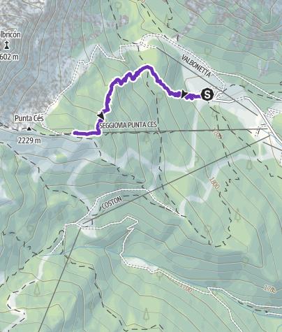 Karte / Vertical Ces