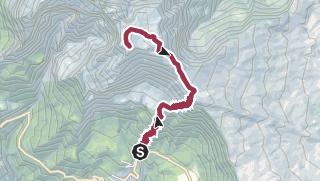 Carte / Randonnée au sommet du Piton des Neiges