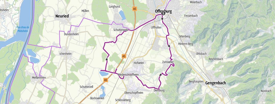 Karte / Offenburg - Diersburg - Baggersee Niederschopfheim - Offenburg (See-Wiesen-Ried-Tour)