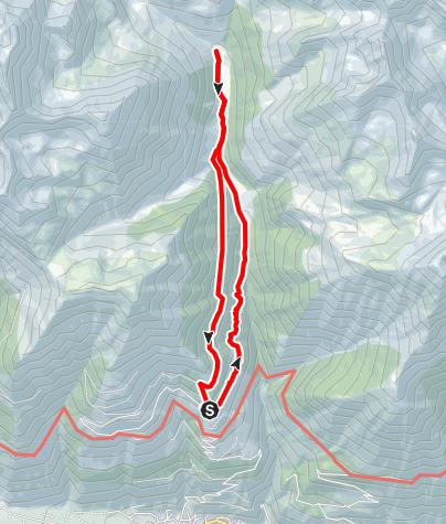 Karte / Neuwaal - Schlandrauntal - Forrawaal