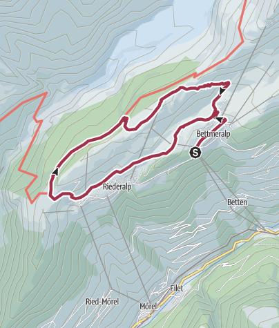Karte / Rundwanderung von der Bettmeralp durch den Aletschwald und zurück