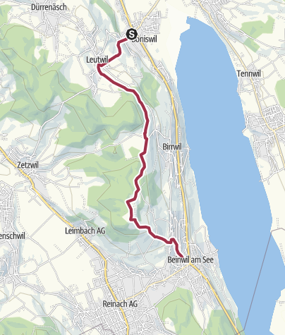 Carte / Boniswil - Homberg - Beinwil am See