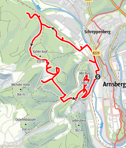 Karte / Kurfürstlicher Thiergarten Arnsberg