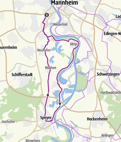 Karte / An den Rheinauen von Ludwigshafen nach Speyer