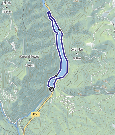 Karte / Lago Schener D