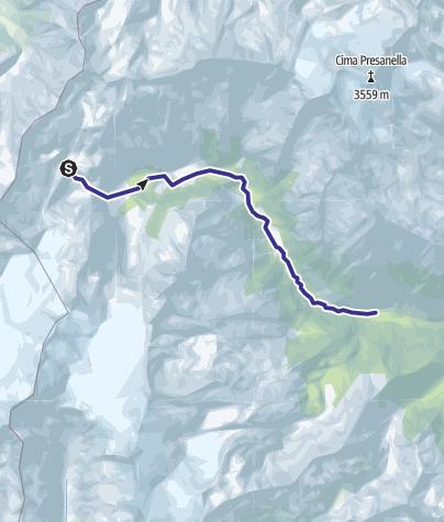 Cartina / Sarca Val Genova alto fino a Rio Lares escluso F