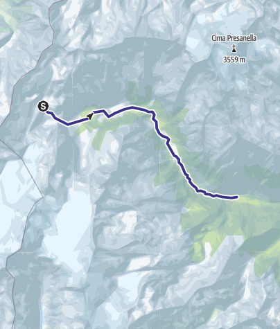 Karte / Sarca Val Genova alto fino a Rio Lares escluso F