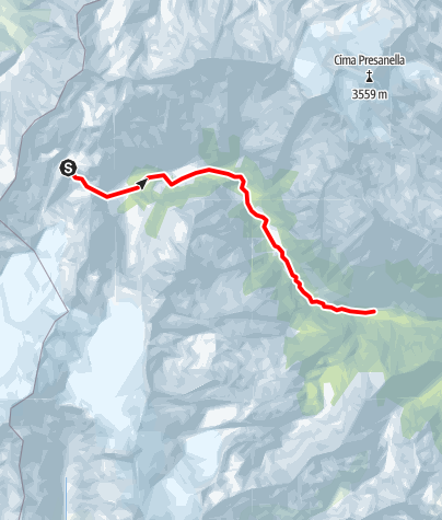 Map / Sarca Val Genova alto fino a Rio Lares escluso F