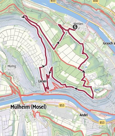 Karte / Mosel-Wanderweg in Lieser: Vom Urstrom zum Strom - Lieser