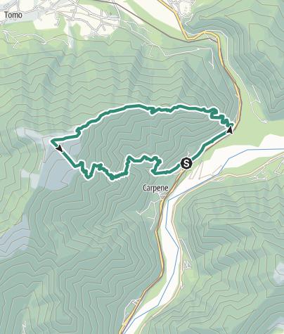 Map / Monte Tomatico: salita per Dorsale Nord Est e discesa per CAI 850
