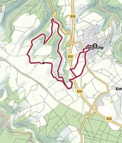 Karte / Tiefenbach-Tour im Moselhunsrück bei Longkamp