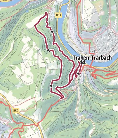 Karte / T 8 - Rund um den Wolfer Berg