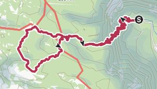 Od Koče pri Savici do Koče pod Bogatinom mimo planine Govnjač