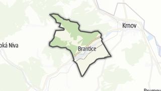 מפה / Brantice