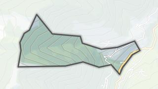 Térkép / Bachos