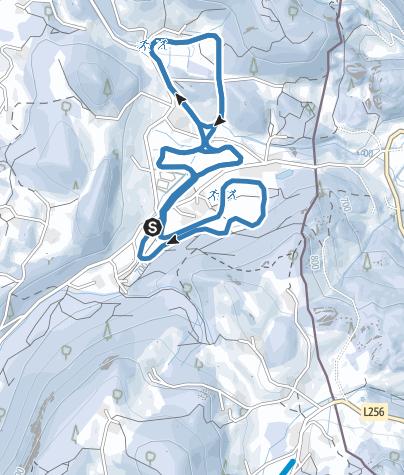 Karte / Langlaufloipen Scheffau-Schellenberg