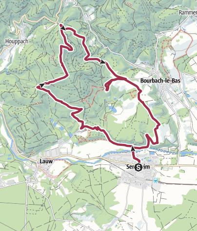 Carte / Sentheim - Buchberg en boucle