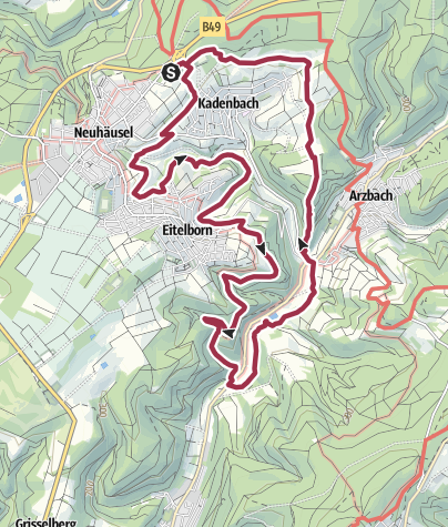 Map / Wäller Tour Augst