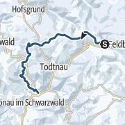 Kartta / Förster-Skiwanderung im Schwarzwald