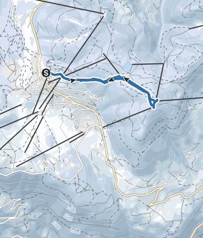 Cartina / Rando Snooc station Les Saisies Espace Diamant