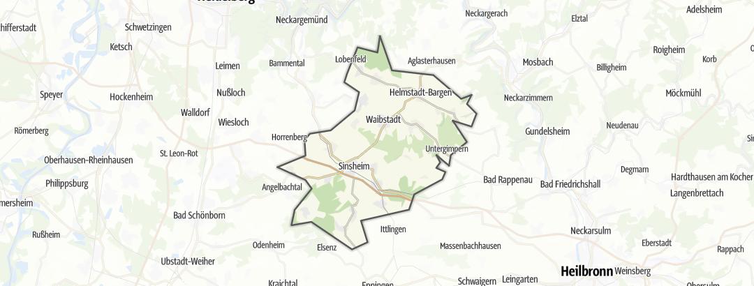 Mapa / Rutas en bici de carretera en Sinsheimer Erlebnisregion