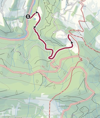 Karte / Fürmannalm Bergwaldrunde