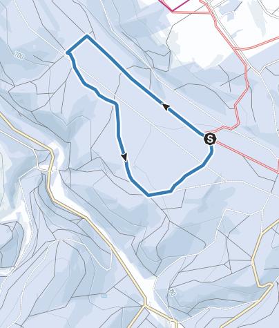 Karte / Altenberg / Schellerhau - Rund-Skiwanderweg Wolfshügel (S2)