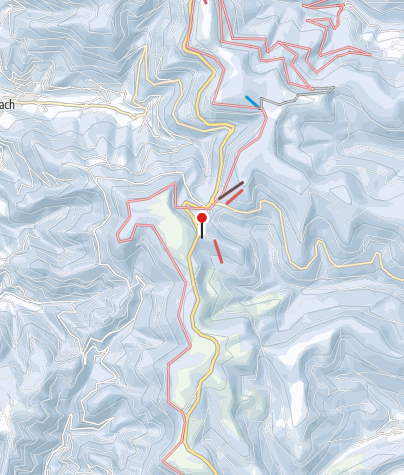 Map / Vogelskopf