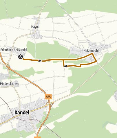 Karte / Erlenbach - Nordic Walking Tour 1 - Rundtour
