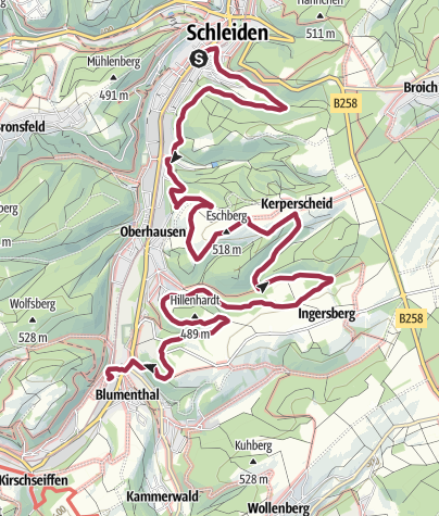 Karte / GPS-Tour: Von Schleiden nach Blumenthal: Arkadische Landschaften im Oleftal
