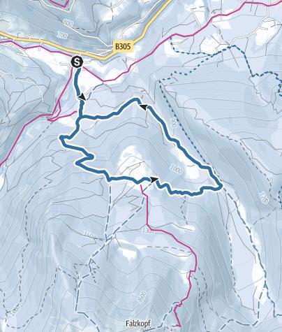 Karte / Schneeschuhwanderung zur Stubenalm