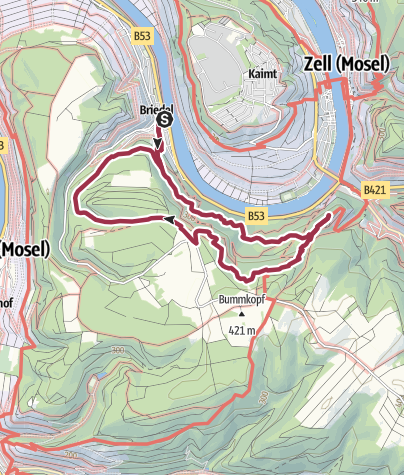 Karte / Moselsteig Seitensprung Briedeler Schweiz